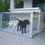 Dual Kennel with Enclosed Verandah