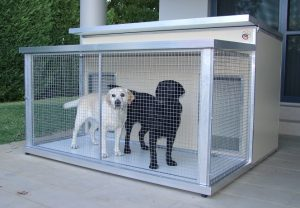 Insulated Dual Kennel with enclosed verandah